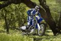 Preise für Yamaha-Crosser