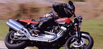 Harley XR 1200 Rennmaschinenprototyp für die Strasse