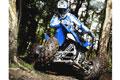 Quad: Neues 250er-ATV fürs Gelände
