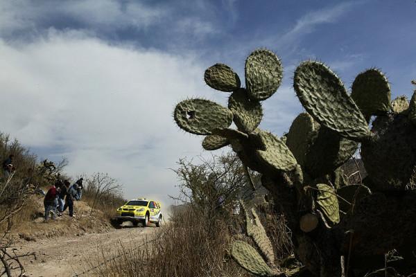 Die WRC in der Wüste Jordaniens: 50 Grad und mehr