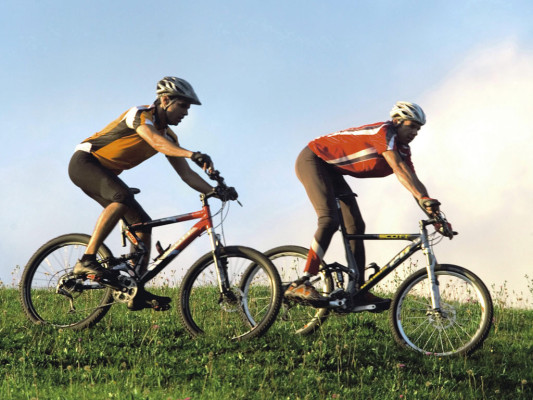 IFMA 2008: Trend geht zu Fahrrädern mit Elektromotor