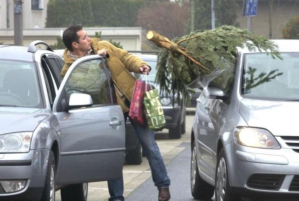 Service: Was beim Transport des Weihnachtsbaums zu beachten ist