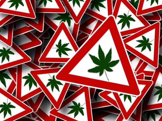 Recht: Führerscheinentzug bei regelmäßigem Cannabis-Konsum