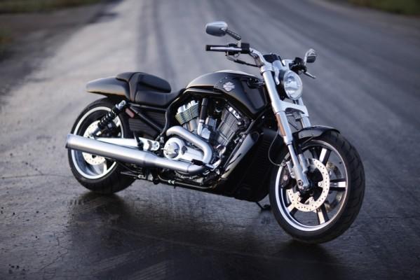 Fahrbericht Harley-Davidson V-Rod Muscle: Kantige Muskelspiele mit Stil