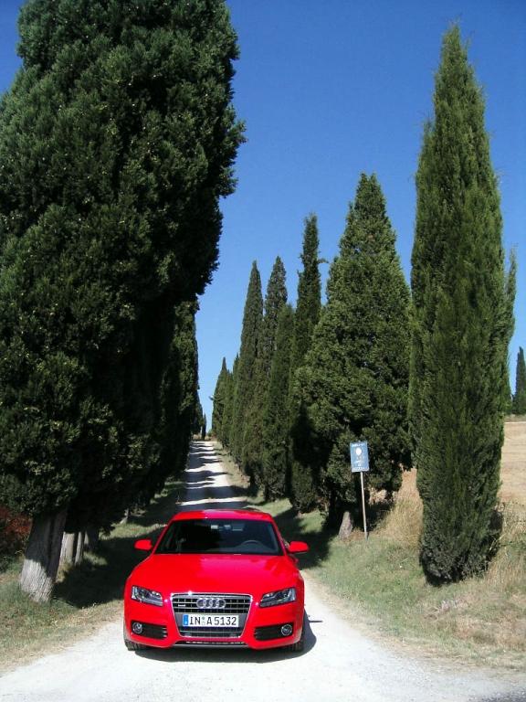 Audi - Bild(14)