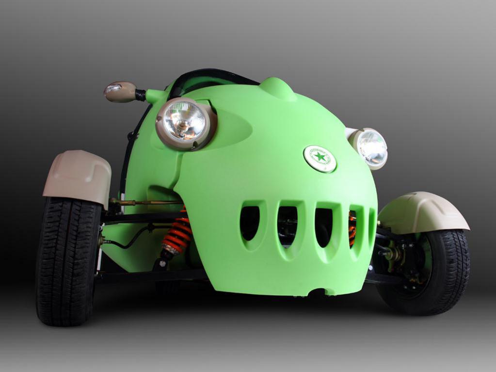 Elektro-Auto: Frosch aus Polen