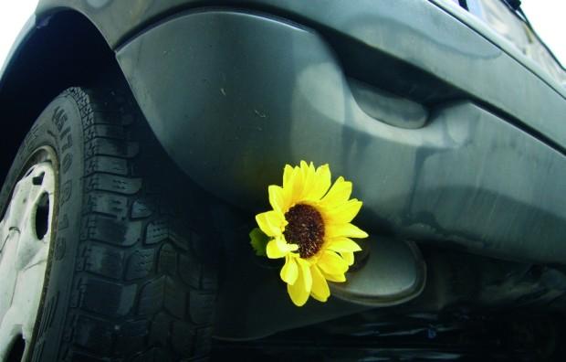 Umweltschützer: Höherer CO2-Ausstoß durch Elektroautos