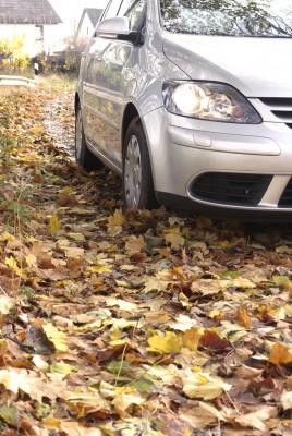 Vereiste Straßen – größter Stress, aber Laub ist gefährlicher