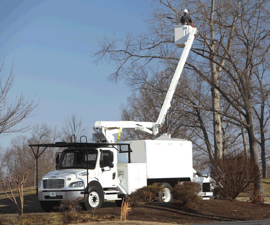 Daimler liefert 75 Freightliner für die US-Forstwirtschaft