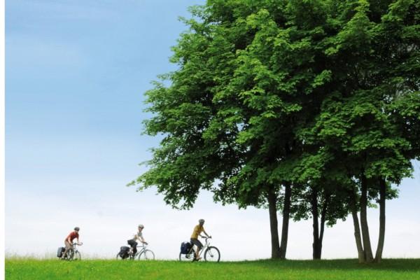Ratgeber: Beim Kauf von Elektrofahrrädern in Betriebsanleitung schauen