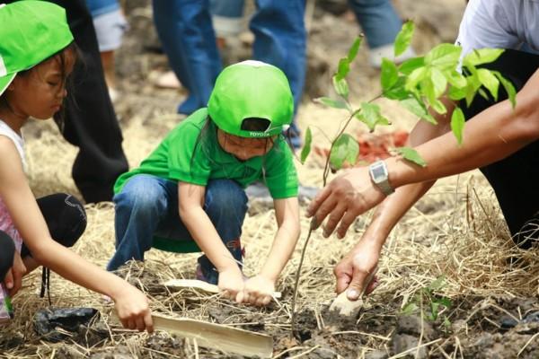 Toyotas Umweltstrategie: Millionster Baum gepflanzt