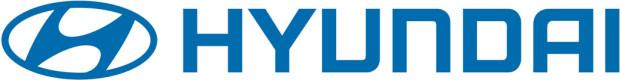 Hyundai Express Check 2010