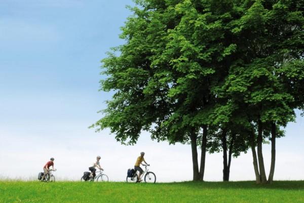 Mit kleinen Kindern sicher Radfahren