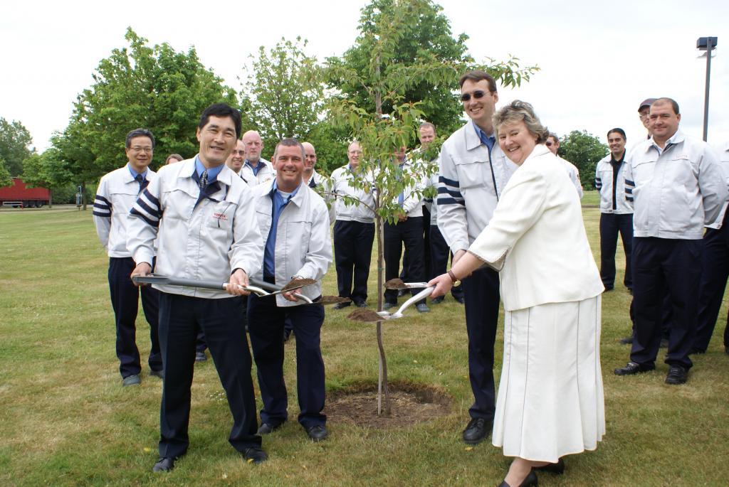 Toyota pflanzt zur Feier des dreimillionsten Fahrzeug aus englischer Produktion einen Baum.