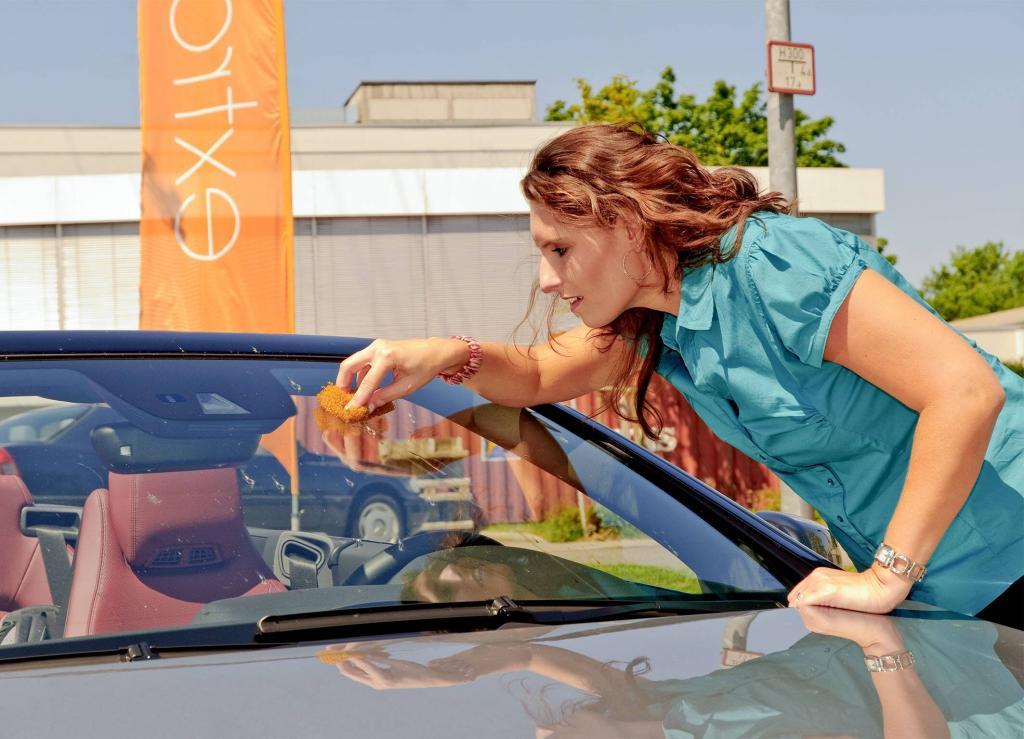 Weg mit Fliegendreck auf der Autoscheibe
