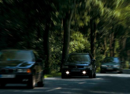 Jährlich 25 000 Urlauber auf Deutscher Alleenstraßen