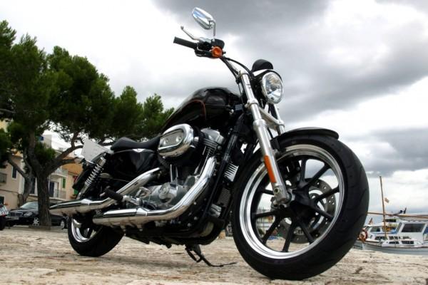 Präsentation Harley-Davidson XL883L SuperLow: Tief und cool