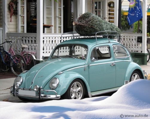 auto.de-Umfrage: So bekommen die Deutschen ihren Weihnachtsbaum nach Hause