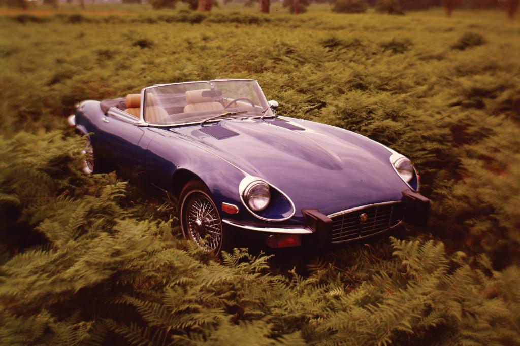 Ewiger Pulsbeschleuniger, der Jaguar E-Type