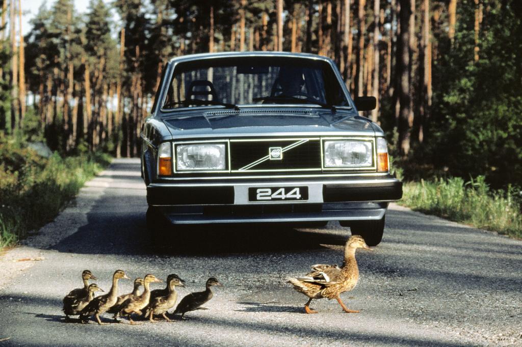 Volvo 242, 1980