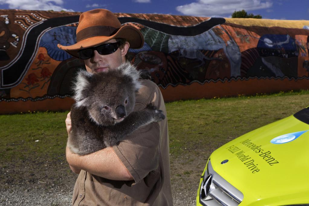 Auch Koalas können sich mit der umweltfreundlichen Technik anfreunden.