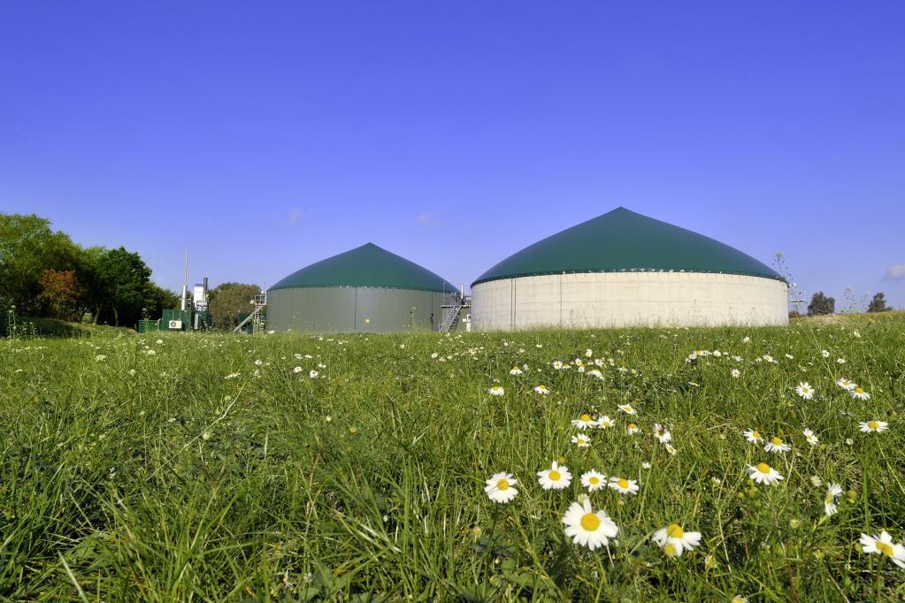 Bei biologischer Erzeugung ist Erdgas ein echtes Naturprodukt.