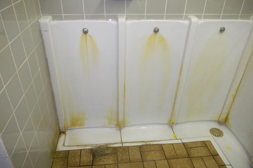 Beispiel für eine unappetitliche Toilette