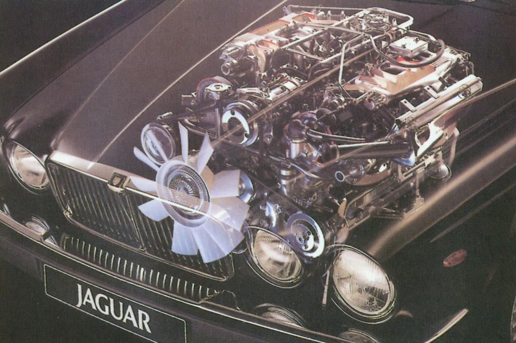 Der V12 füllt die Motorhaube fast komplett
