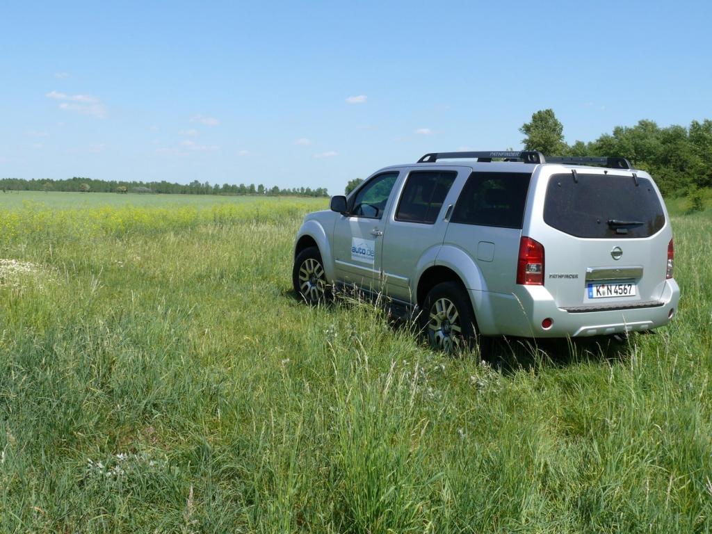 Fahrbericht Nissan Pathfinder LE 3,0 V6 dCI - Einer fürs Grobe