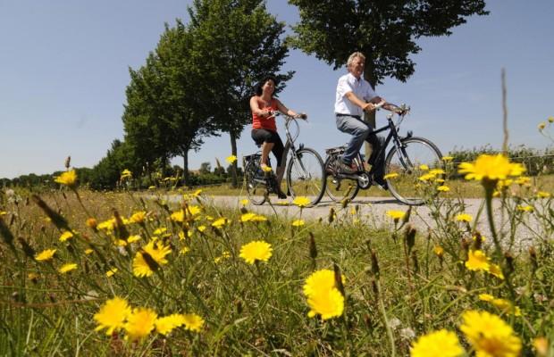Recht: Radfahren trotz Alkohol am Steuer