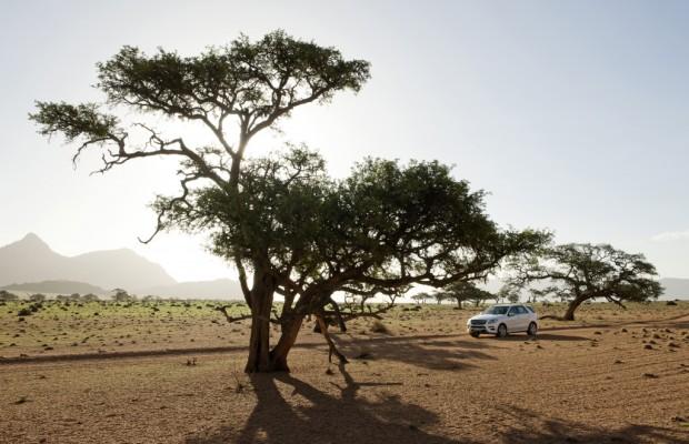 Preise für neue Mercedes M-Klasse - Sparen kostet ein wenig