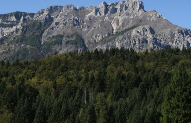 Ratgeber: Gebirgsfahrt - Gut gebremst ins Tal