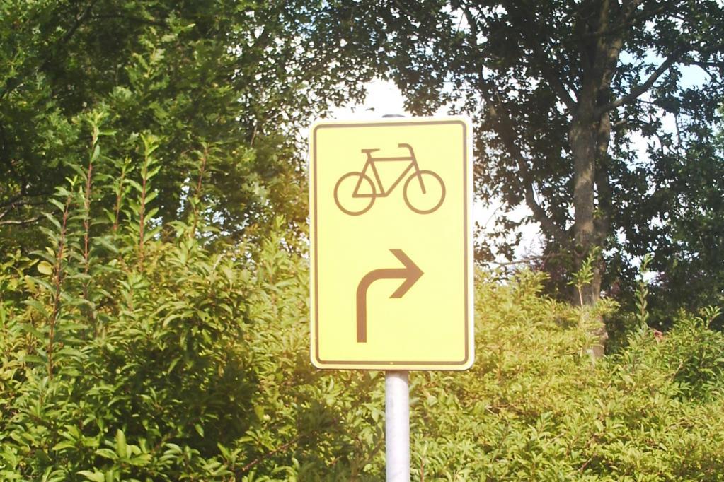 Recht: Rote Ampel gilt auch für Radfahrer