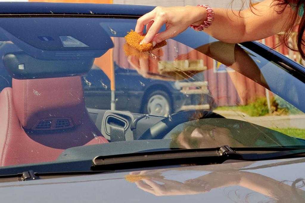 Autopflege - Weg mit dem Fliegendreck
