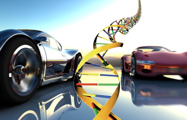 DNA des Autos entschlüsselt