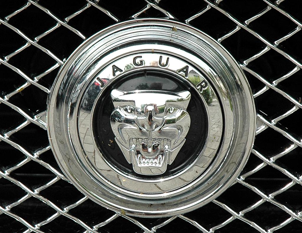 Jaguar XKR Cabrio: Das Raubkatzen-Markenemblem sitzt mittig im Kühlergrill.