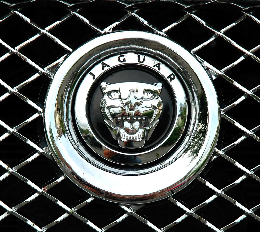 Jaguar XJ: Das Raubkatzen-Markenlogo sitzt vorn im oberen Teil des Kühlergrills.