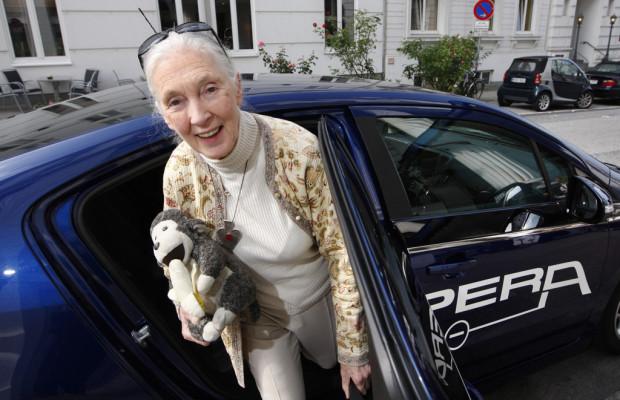 Jane Goodall im Opel Ampera auf Vortragsreise