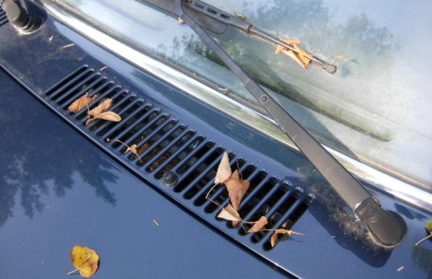 Ratgeber Autopflege - Blätter aus Ritzen entfernen