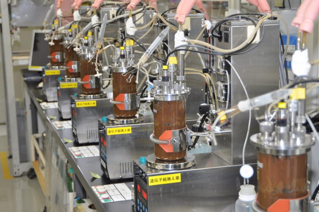 Bio-Kraftstoff - Neue Hefe für günstiges Ethanol