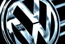 Volkswagen-Mitarbeiter pflanzen Erlen