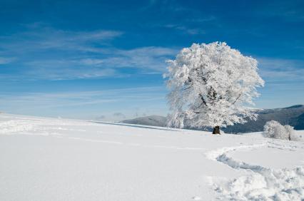 Weitere Wintersperren für Alpenpässe