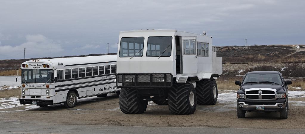 Die Bezeichnung Buggy lässt zunächst an ein kleines, leichtes Fahrzeug denken, doch das glatte Gegenteil ist der Fall. Auf den ersten Blick sieht der Tundra Buggy aus wie ein weißer Bungalow.