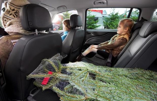 Tannenbaum-Transport - Vorsicht bei der letzten Fahrt
