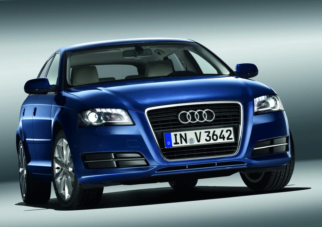 Vom Audi A3 erhalten die Aggregate 1,6 FSI (September 2003 - Mai 2004) sowie 2,0 FSI (März 2003 - Mai 2004) keine E10-Freigabe.