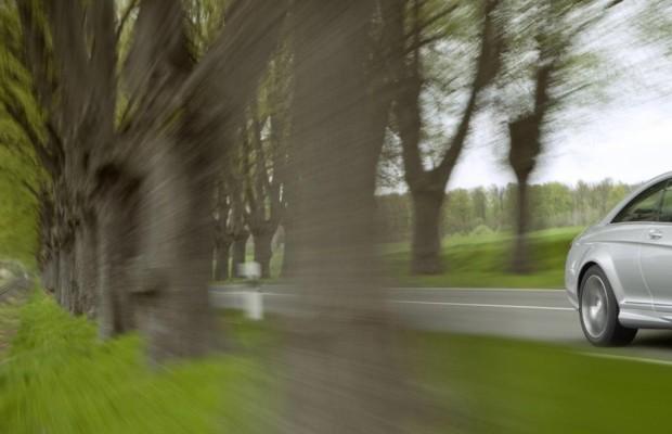 Verkehrsunfälle - Gefährliche Alleen