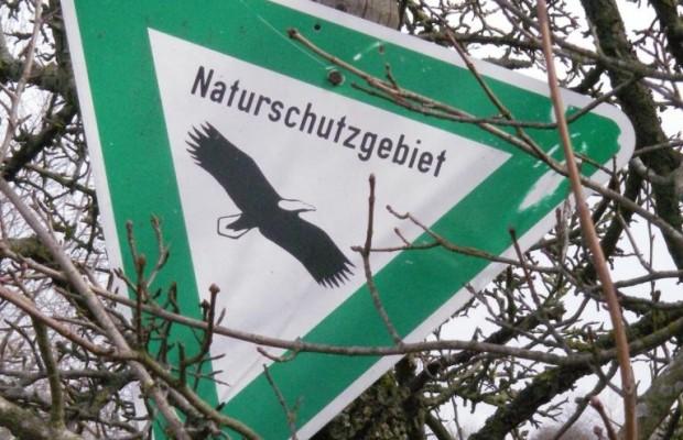 Geschwindigkeitsreduzierung für Vogelschutz rechtswidrig