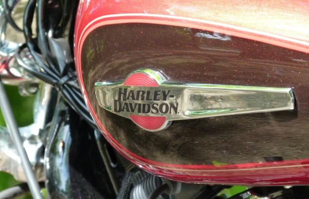 Tsunami: Vermisste Harley in Kanada entdeckt