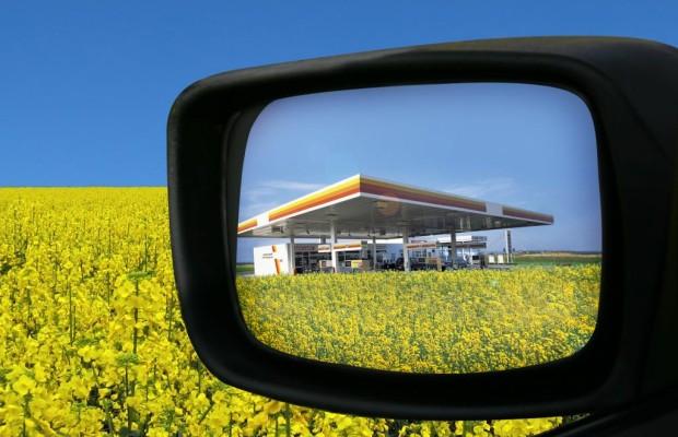 Umfrage zu E10 - Ein Treibstoff steht in der Ecke