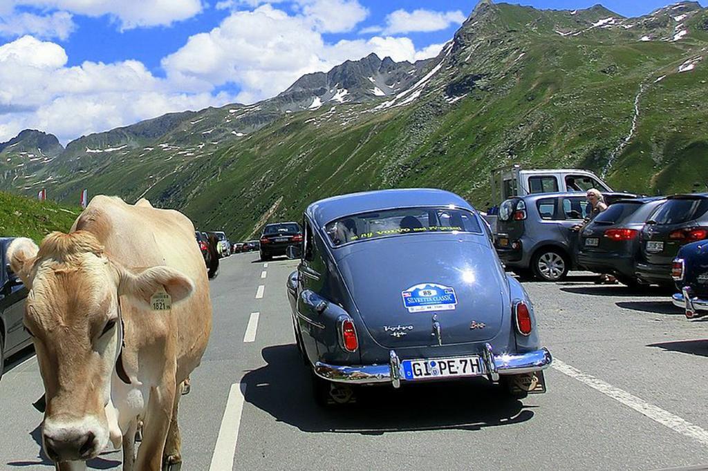 Der Volvo P544 in den Bergen